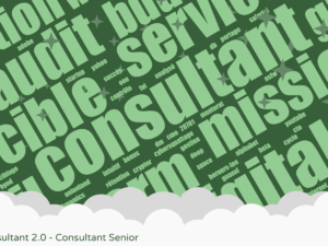 Le Consultant 2.0 - Consultant Senior