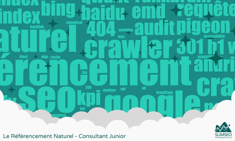 Le Référencement Naturel - Consultant Junior