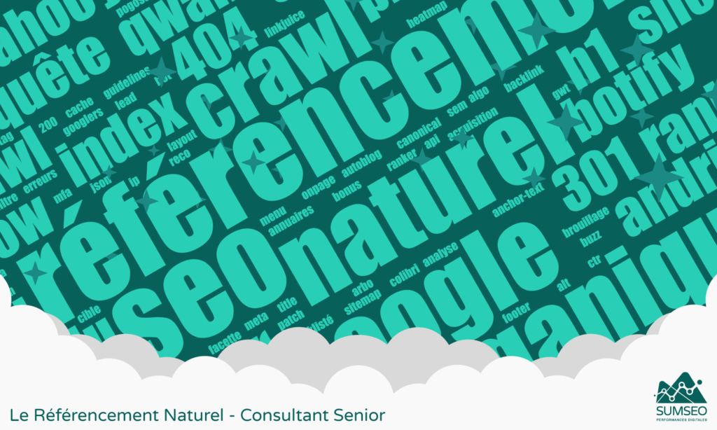 Le Référencement Naturel - Consultant Senior