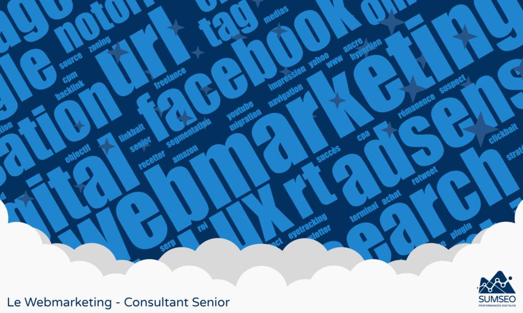 Le Webmarketing - Consultant