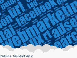 webmarketing-consultant-senior
